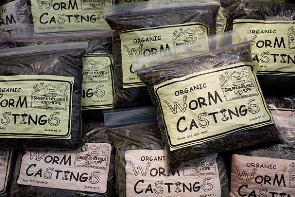 worm-castings